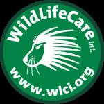 WLCI_logo_DEF
